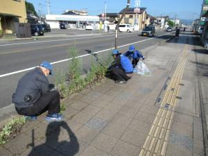 歩道の除草作業