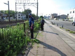 線路脇の除草作業